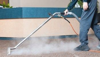 couch cleaning brisbane steam carpet cleaning brisbane carpet cleaning from