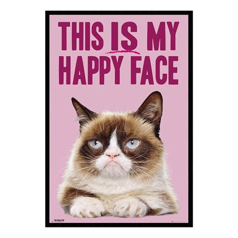 my happy grumpy cat this is my happy poster iposters