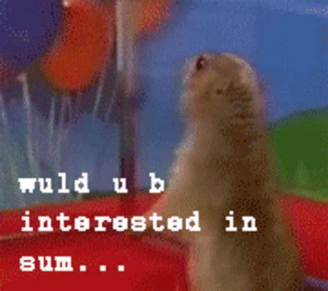 Dramatic Squirrel Meme - image 14724 dramatic chipmunk know your meme