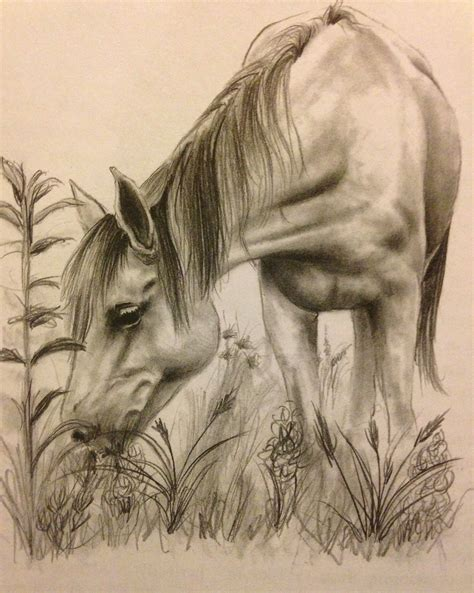 Sketches Horses by Drawing Happy