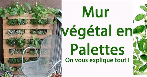 oltre 20 migliori idee su oltre 20 migliori idee su mur vegetal en palette su