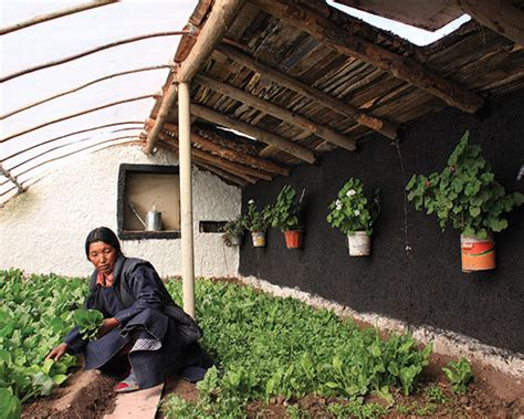 green house chinese chinese greenhouses for winter gardening organic gardening mother earth news