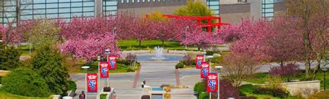 Stony Brook Mba Ranking by Top 50 Best Value Graduate Schools Value Colleges