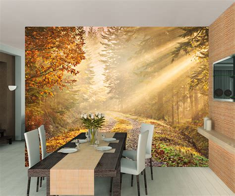 forest wall mural wallpaper forest walkway wall mural wall murals ireland