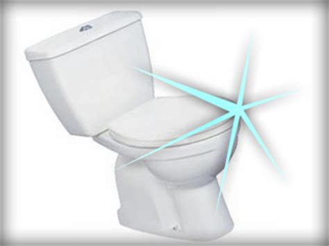 how to clean a toilet knoxville plumbing