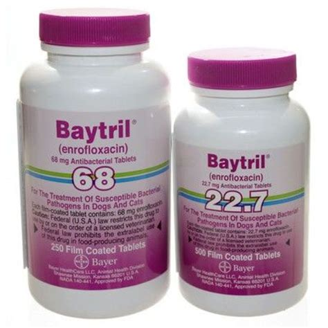 enrofloxacin for dogs baytril tablets antibacterial for dogs and cats vetrxdirect