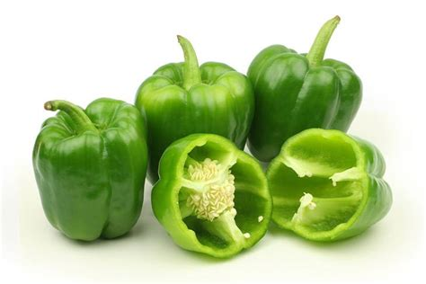 can dogs eat green peppers can dogs eat green peppers find out the interesting details
