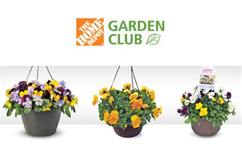 home depot hanging baskets or planters