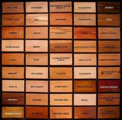 25 best ideas about types of wood on types of