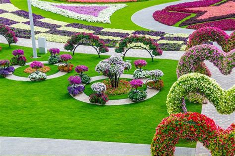 Dubai Miracle Garden World Biggest Flower Garden Flower Garden In The World