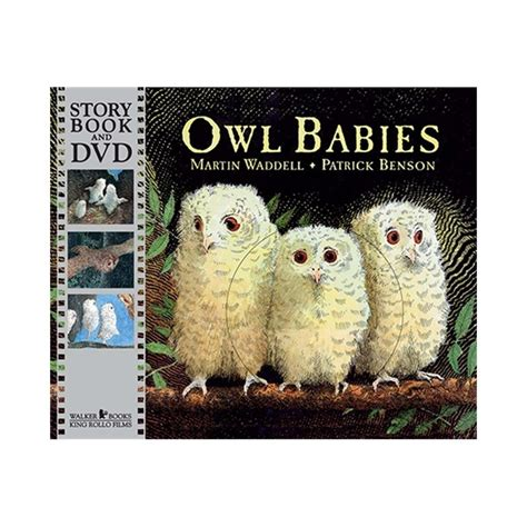 owl babies paperback with dvd english wooks