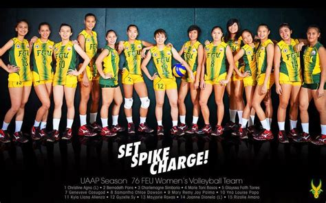 Seragam Team Volumi Mizuno 1 Set Isi 12 Pcs Printing ang libero set spike charge