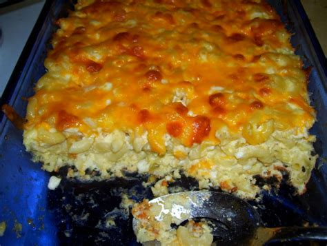 baked cottage cheese baked macaroni pie with cottage cheese recipe food
