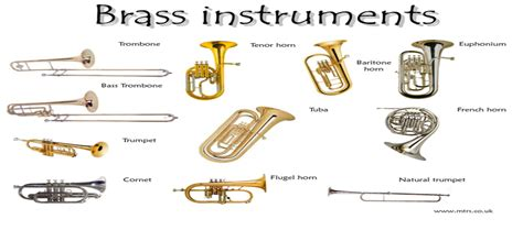 what should i play what brass instrument should you learn to play
