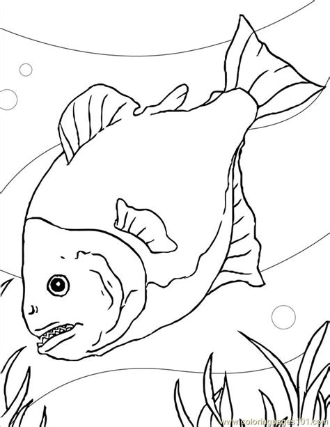 Piranha Coloring Page coloring pages piranha ink animals gt fishes free