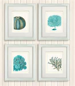 set of 4 blue coral sea urchin prints nautical print