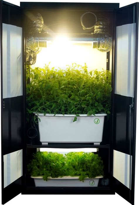 How To Grow Marijuana In A Closet by Closet Grow Box I Really Like This System It Is An