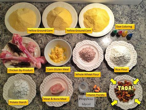 food ingredients interesting look at pet food ingredients about pet food