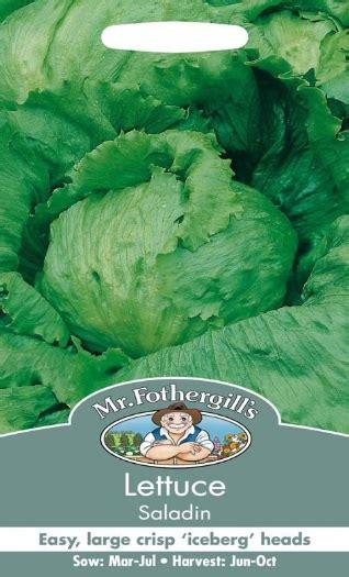 Benih Selada Lettuce Gem Mrfothergills Kemasan Asli benih selada saladin 750 biji mr fothergills