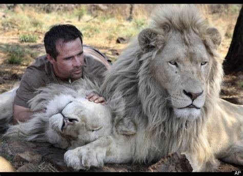 film white lion 2010 white lion film highlights trophy hunting in south