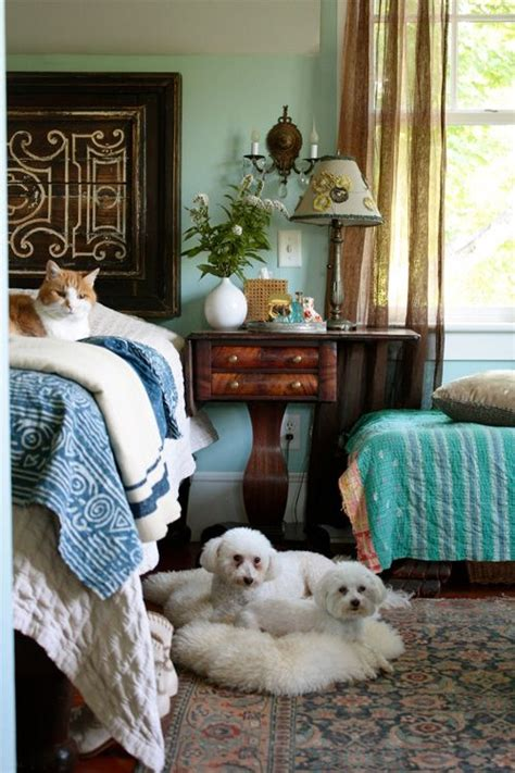 Cosy Cottage Cattery by 17 Best Images About Who Dosn T Like A Warm Cozy Bed On Cottages Beds And Sleep