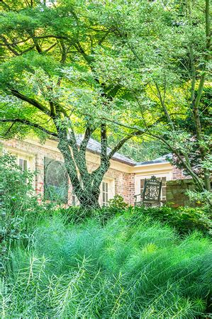 garden photography, landscape architecture photography