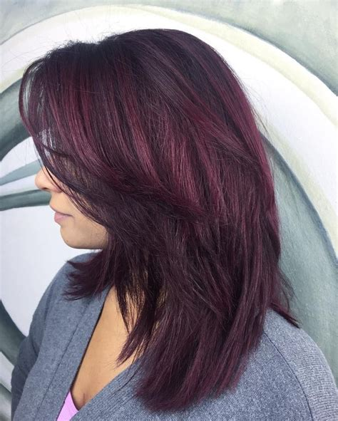best 25 burgundy plum hair ideas on plum hair