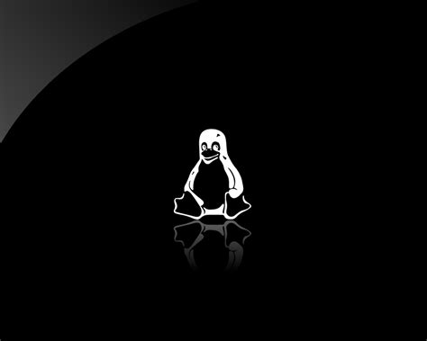 wallpaper black linux linux tux wallpapers wallpaper cave