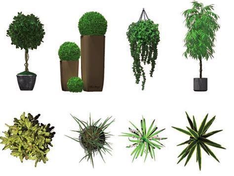 dosch design dosch   images indoor plants