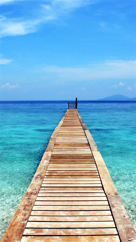 wallpaper for iphone 5 beaches wallpaper iphone 5 the palm tree life pinterest