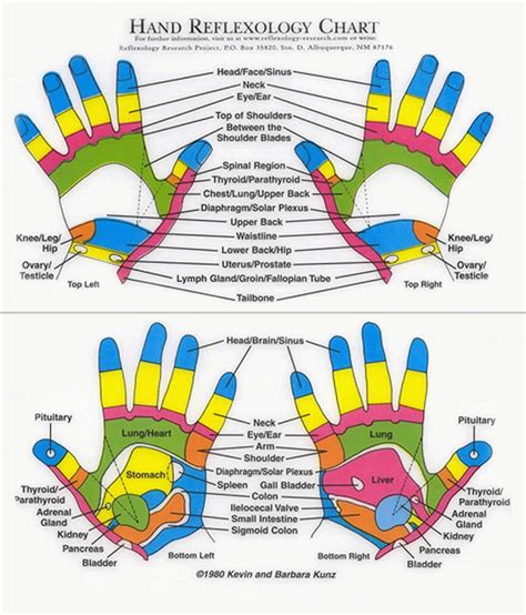 reflexology diagram reflexology chart pressure points