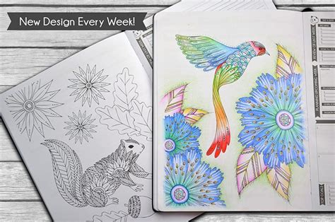 coloring book planner panda planner color coloring book weekly planner for