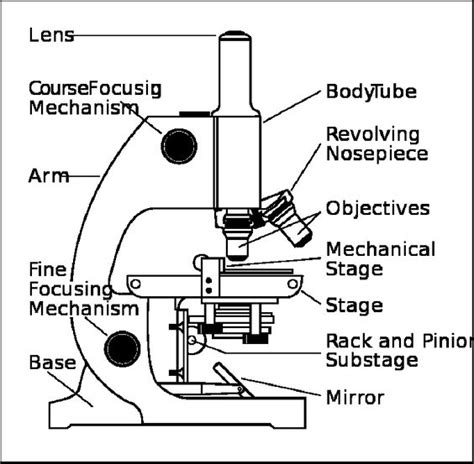 color the microscope parts microscope with labels coloring pages