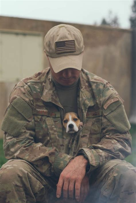 war a soldier s best friend 34 touching photos that reveal dogs are a soldier s best friend