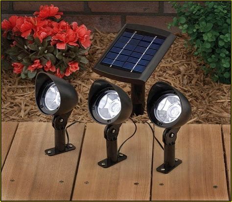 solar powered landscape lights dude grows