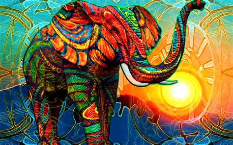colorful elephant wallpaper elephant full hd wallpaper and background image