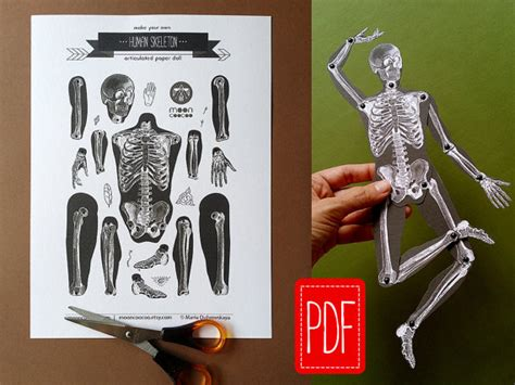 Make Your Own Paper Skeleton - skeleton pdf articulated paper doll instant printable