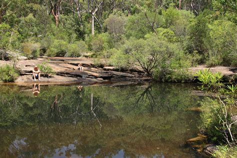 the 8 best swimming holes near sydney
