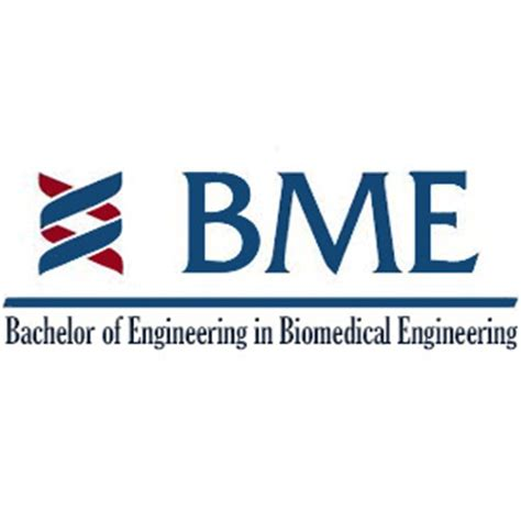 Mba Biomedical Engineering by Bachelor Of Engineering In Biomedical Engineering