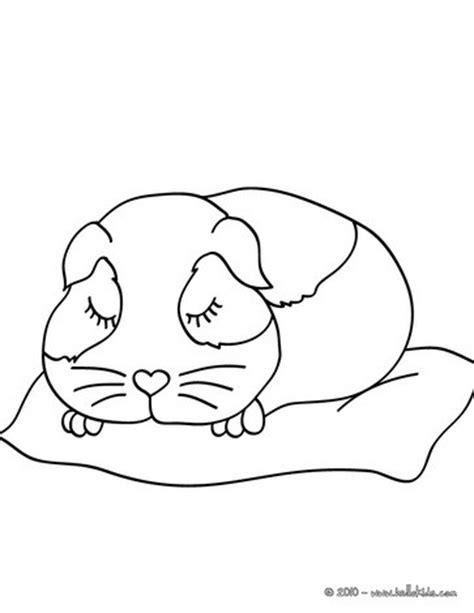 Sleeping Guinea Pig Coloring Pages Hellokids Com Guinea Pig Colouring Pages