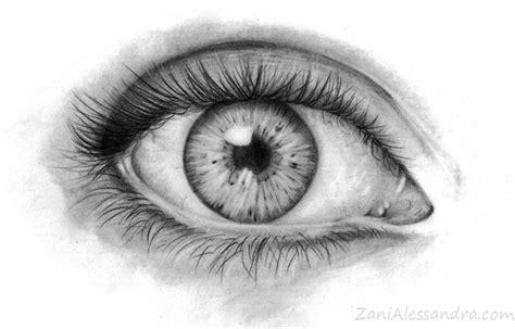 dolore all occhio sinistro e alla testa cervicale o mal di collo 2 esercizi anti dolore i mei