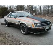 1979 Ford Mustang Indy Pace Car 302 5 Spd 8 Rear Hot