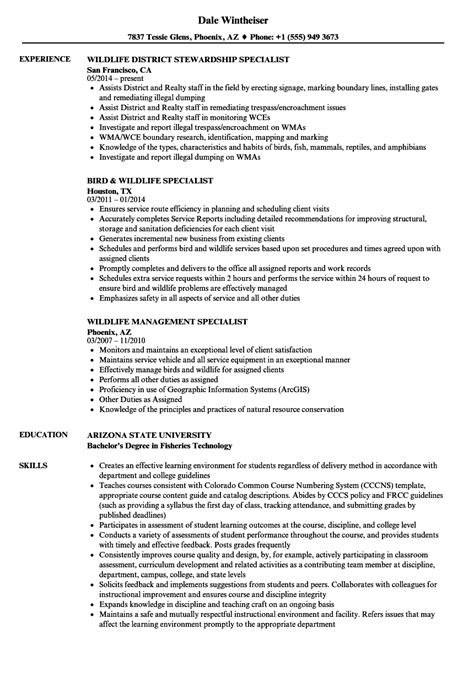 resume fishers related fishing workers graphic designer