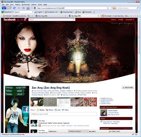 editing facebook layout customize edit modify facebook layout skin theme