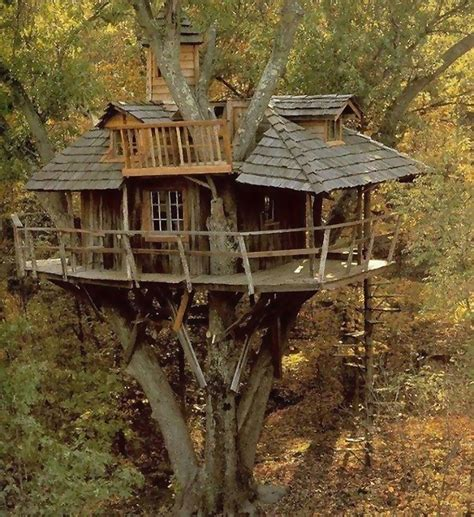 Amazing Tree Houses | amazing tree house on the world house number two