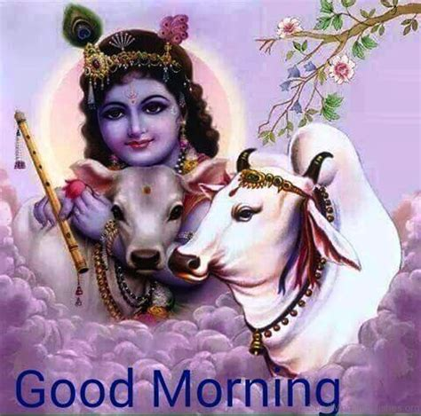 krishna images good morning 14 good morning wishes with god pics