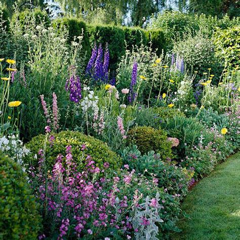 Summer Cottage Garden Plan Garden Planning Delphiniums Year Flower Garden