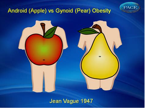 android obesity priorities in the management of type 2 diabetes