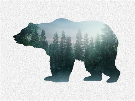 bear silhouette tattoo archival print 8 x 10 northern tree