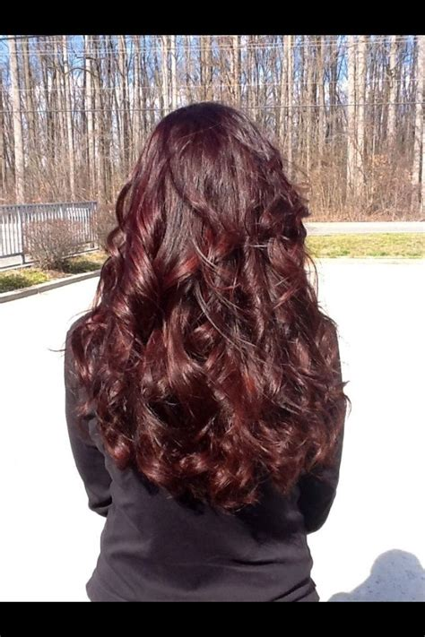 brown cherry hair color best 25 chocolate cherry hair ideas on pinterest dark